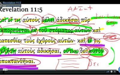 Revelation 11-5