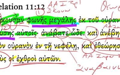 Revelation 11-12